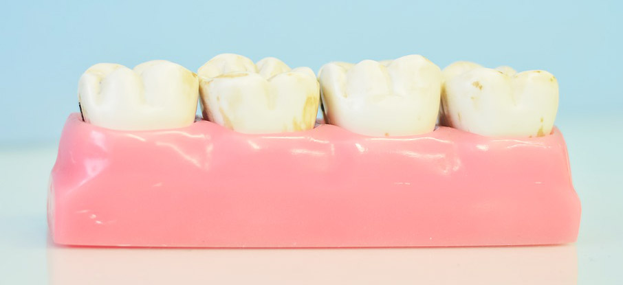 dental_5.jpg